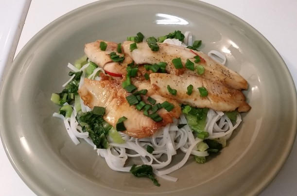 meal #2: vietnamese caramel fish with vermicelli and bok choy